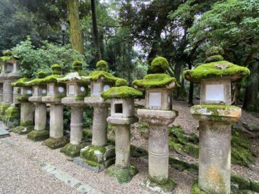 【Go To トラベル で子連れでお得に奈良観光】サイトや予約方法など